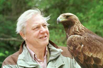 Biografie Sir David Attenborough